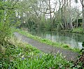 Basingstoke Canal and towpath - geograph.org.uk - 769472.jpg