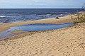Beach of Peipsi lake, Estonia .JPG
