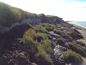 Climate change in the Arctic - Rapidly thawing Arctic permafrost and coastal erosion on the Beaufort Sea, Arctic Ocean, near Point Lonely, AK. Photo Taken in August 2013