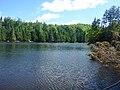 Beaver Pond - panoramio (4).jpg