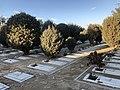 Beheshte Zahra Cemetery 4514.jpg