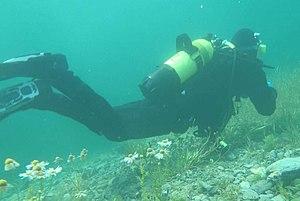 Altitude diving - Image: Bergseetauchen Lai da Marmorera