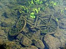 Bicycle in the Meuse River Maastricht.jpg