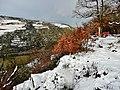 Blick vom Rheinsteig Richtung Nordwesten - panoramio.jpg