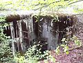 Blockhaus dans la forêt de Coume.JPG