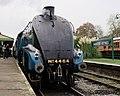 Bluebell Railway - Giants of Steam (22855961182).jpg