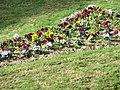 Blumen an der Plaza del Concilio del Trente (8099736).jpg