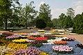 Blumenzauber by Niederkasseler - panoramio.jpg