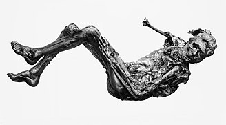 Borremose - The Borremose Man, one of several bog bodies, animal sacrifices and votive offerings found in and around Borremose.
