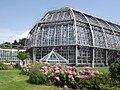 Botanischer Garten - Gewaechshaeuser (Botanic garden - Greenhouses) - geo.hlipp.de - 26726.jpg