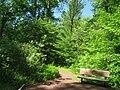 Bowman's Hill Wildflower Preserve - IMG 8280.JPG