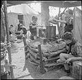 Boy Scouts Pick Fruit For Jam- Life on a Fruit-picking Camp Near Cambridge, England, UK, 1943 D16198.jpg