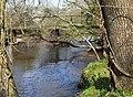 Bridge Crossing the Lymington River, Roydon Woods. - geograph.org.uk - 390298.jpg