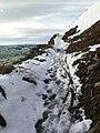 Bridleway down Fell End Hush - geograph.org.uk - 1165679.jpg