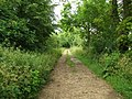 Bridleway near Wakeley Spring. - geograph.org.uk - 473521.jpg