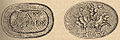 Brockhaus and Efron Jewish Encyclopedia e1 149-3.jpg