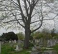 Brompton Cemetery (5987366588).jpg