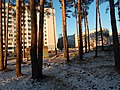 Bryansk, Bryansk Oblast, Russia - panoramio (16).jpg