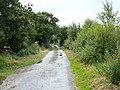 Bull Gap Lane - geograph.org.uk - 942694.jpg