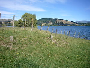Cyclone Bola - Fence posts buried alongside Lake Tūtira due to erosion caused by Cyclone Bola