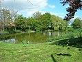 Burton Fleming Duck Pond - geograph.org.uk - 1282195.jpg