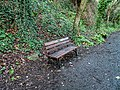 Bushy Park, Dublin -146490 (44661403260).jpg