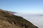 California Coast veiled in fog (15553411246).jpg