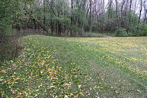 National Register of Historic Places listings in Calumet County, Wisconsin - Image: Calumet County Effigy Mound