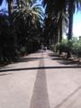 Camino Largo 5.png