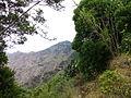 Camino y matorral, Macizo de Anaga, Tenerife, España, 2015.JPG