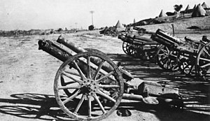 5th Light Horse Regiment (Australia) - Turkish guns captured by the regiment October 1916