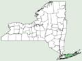 Carex crinita var brevicrinis NY-dist-map.png