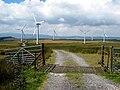 Carno Wind Farm (by Oliver-Dixon, 903927 3dd163da).jpg