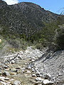 Carpenter Canyon creek 1.jpg