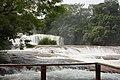 Cascadas de Agua Azul2020p1.jpg