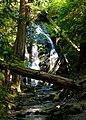 Cascade Falls, Moran State Park.jpg