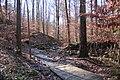 Cascade Springs Nature Preserve boardwalk, Atlanta, Dec 2018 1.jpg