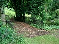Cast iron bridge at Kyre Park - geograph.org.uk - 493326.jpg