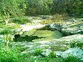 Cenote Chen Ha (07).JPG