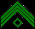 Chevrons - Mounted Riflemen First Sergeant.png