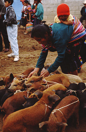 Quiché Department - Chichicastenango Market, 1996