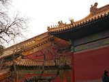 China-beijing-forbidden-city-P1000230.jpg