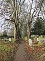 Churchyard path in December - geograph.org.uk - 1619842.jpg