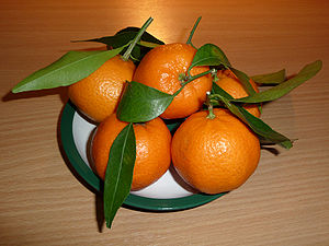 Mandarin orange fruit Citrus reticulata