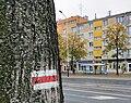 City view from Pabianice (1).jpg