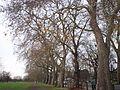 Clapham Common.jpg