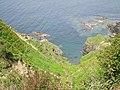 Cliff east of Tully Cross (6047420983).jpg