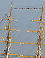Colombian tall Ship ARC Gloria 120510-N-ZZ999-002.jpg