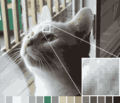 Color reduction example undithered.png