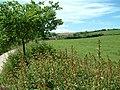 Combe Lancey, Devon - geograph.org.uk - 448090.jpg